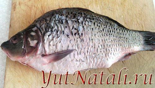 невысокого во сне жарила рыбу прямом эфире